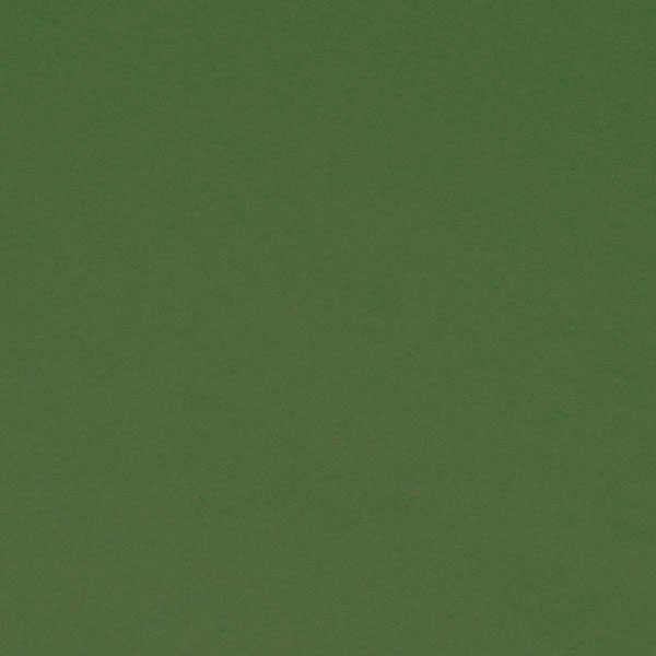 "<h1 style=""text-align: center;"">Tru-Ray<sup>®</sup> Dark Green Construction Paper</h1>"