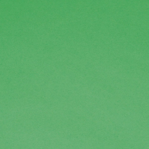 "<h1 style=""text-align: center;"">Tru-Ray<sup>®</sup> Festive Green Construction Paper</h1>"