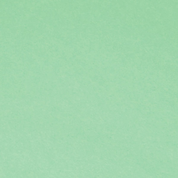 "<h1 style=""text-align: center;"">Tru-Ray<sup>®</sup> Light Green Construction Paper</h1>"