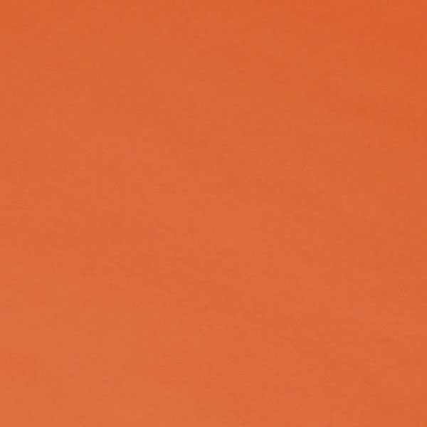"<h1 style=""text-align: center;"">Tru-Ray<sup>®</sup> Orange Construction Paper</h1>"