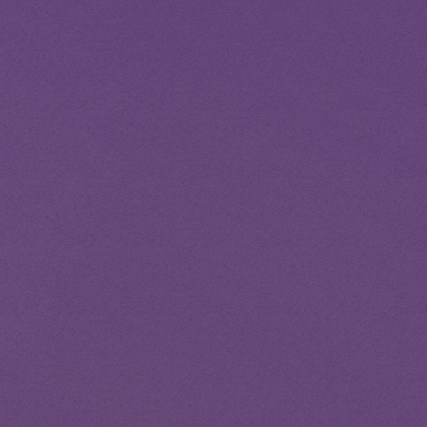 "<h1 style=""text-align: center;"">Tru-Ray<sup>®</sup> Purple Construction Paper</h1>"