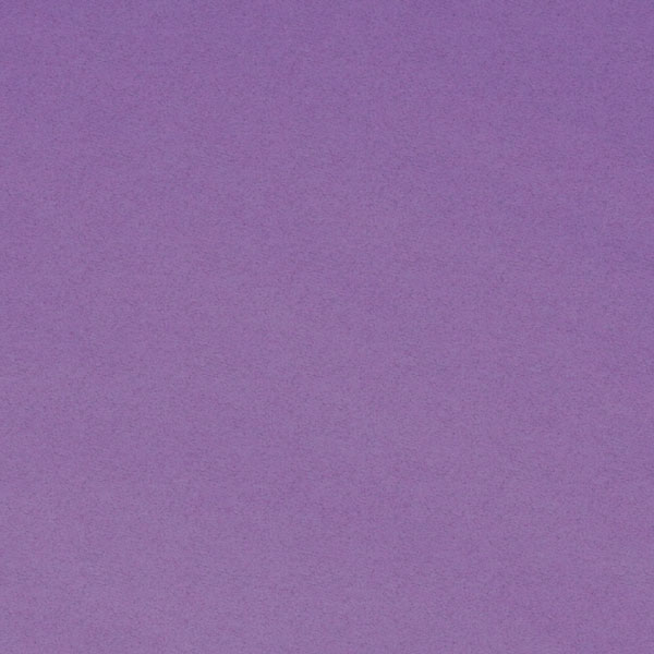 "<h1 style=""text-align: center;"">Tru-Ray<sup>®</sup> Violet Construction Paper</h1>"